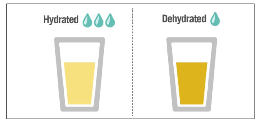 hidratacion-correcta-2