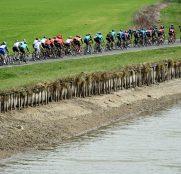 paris-niza-2019-etapa3-peloton