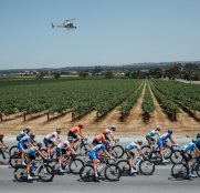 tour-down-under-2020-peloton