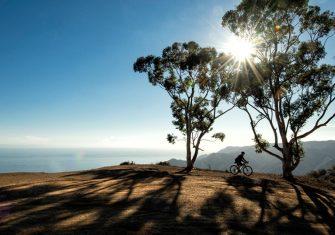 Bontrager GR2, para los ciclistas más aventureros