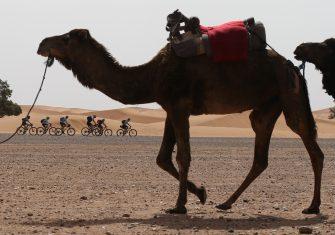 Titan Desert 2021: Del 23 al 28 de mayo en Marruecos