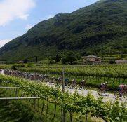 giro-italia-2021-etapa18-peloton